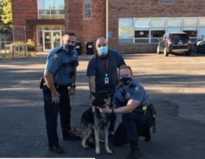Stolen therapy dog found